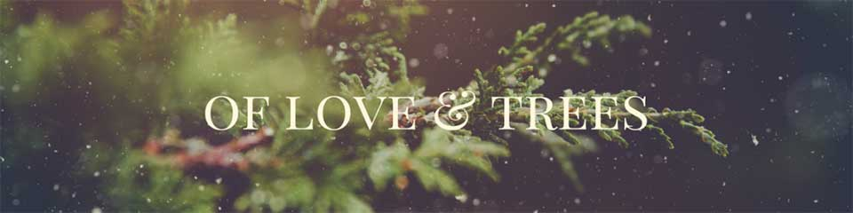A Story Of Love And Trees